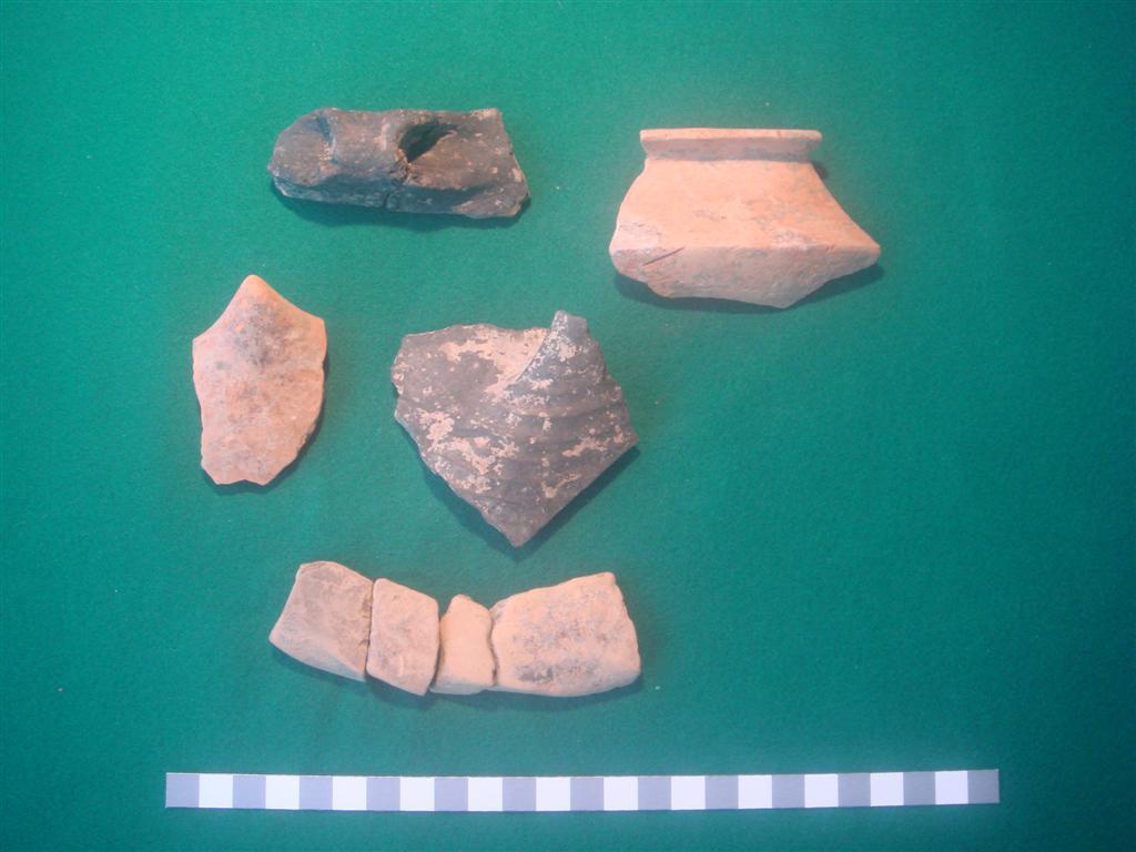 Keramika sa nalazista Puric-Ljubanj